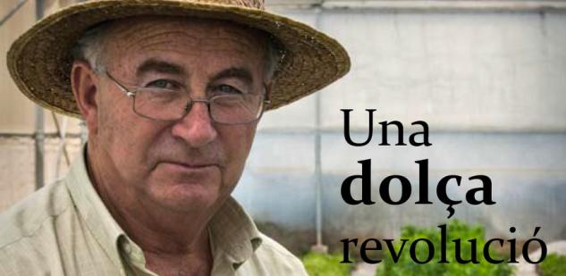 dulce revolución david vazquez
